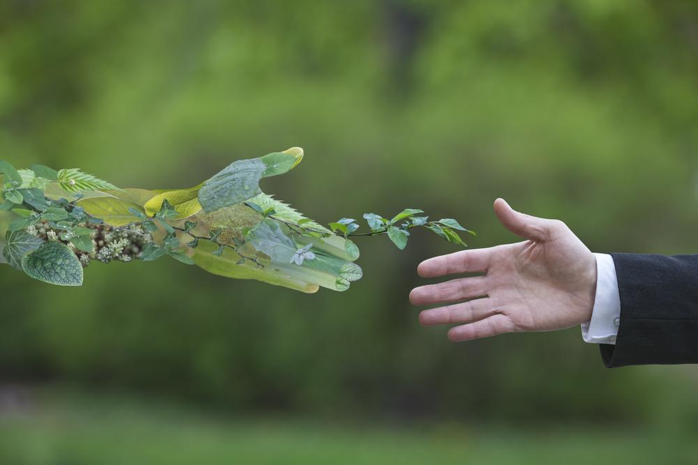 Corporate Wear Towards Nature
